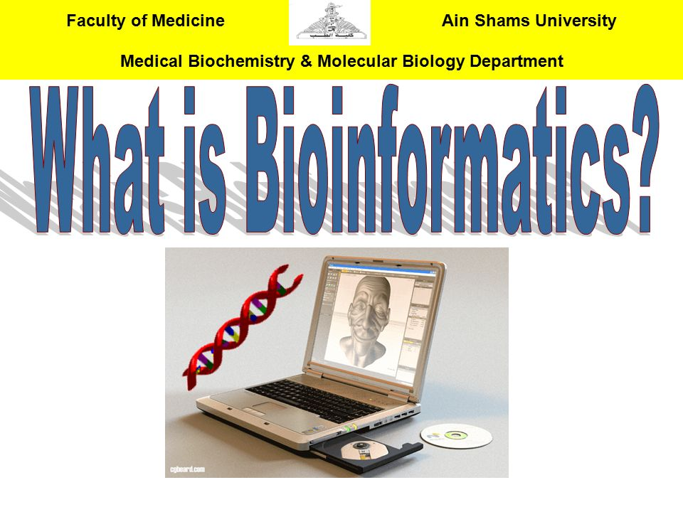 What is Bioinformatics