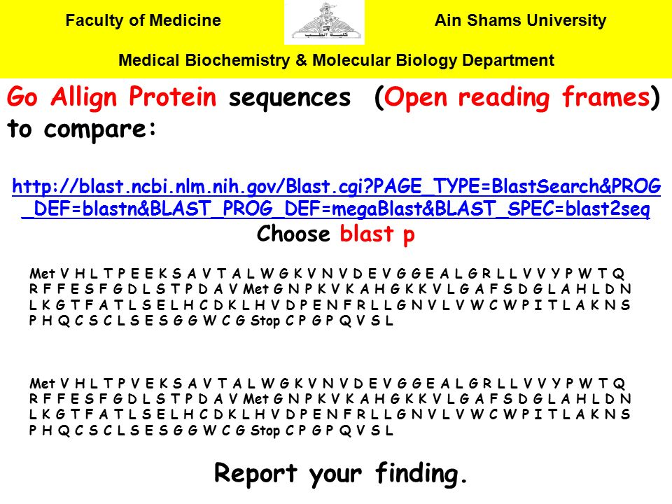 Go Allign Protein sequences (Open reading frames) to compare: