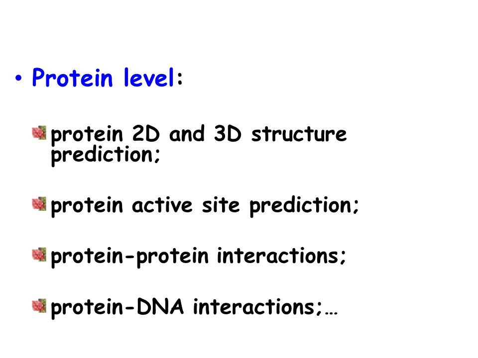 Protein level: protein 2D and 3D structure prediction;