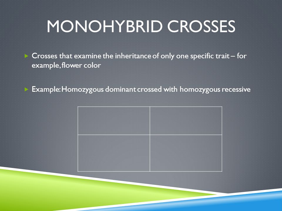 Monohybrid crosses Crosses that examine the inheritance of only one specific trait – for example, flower color.