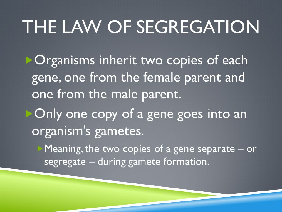 The law of segregation Organisms inherit two copies of each gene, one from the female parent and one from the male parent.