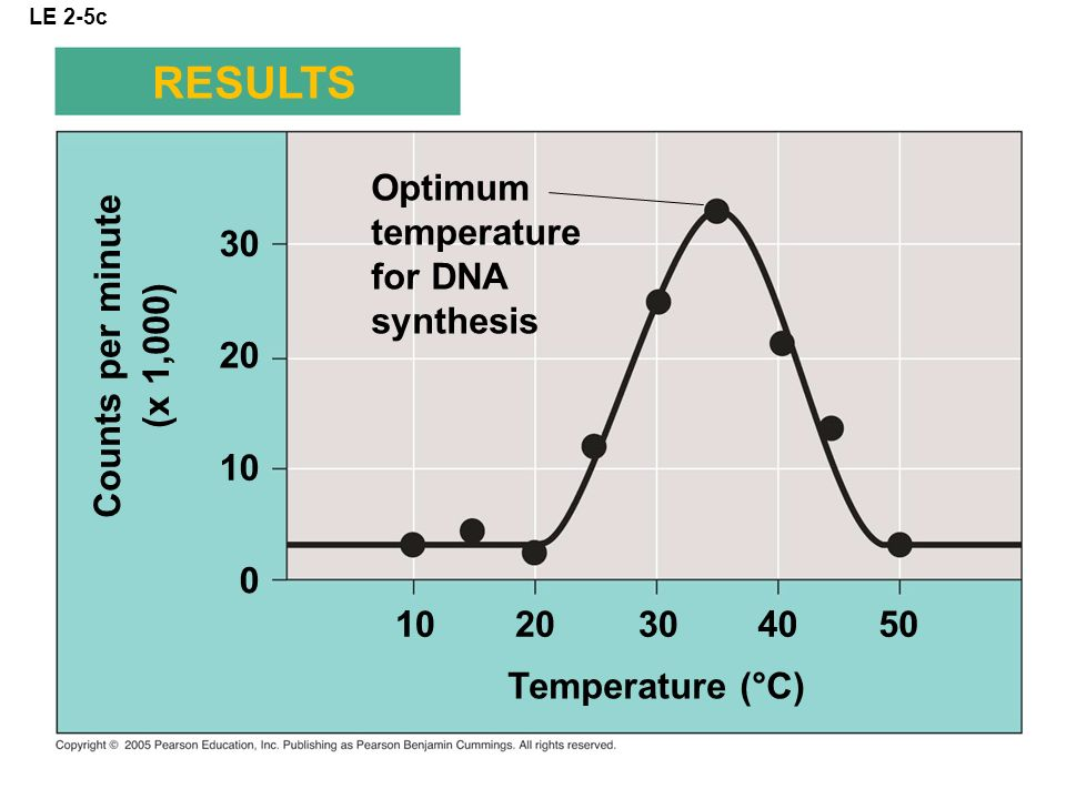 RESULTS Optimum temperature for DNA synthesis 30 Counts per minute