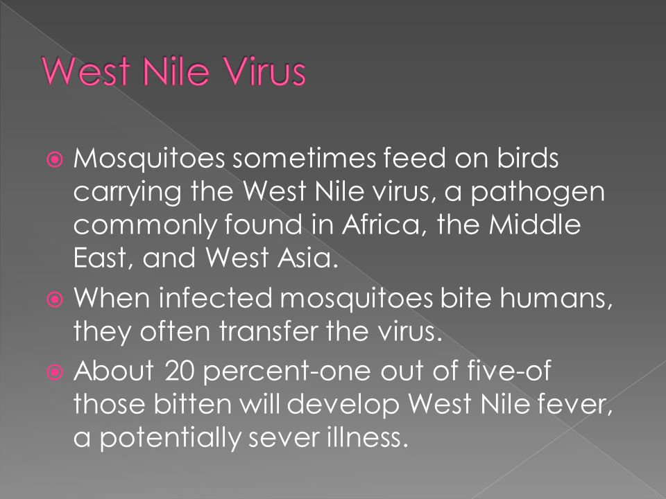 West Nile Virus Mosquitoes sometimes feed on birds carrying the West Nile virus, a pathogen commonly found in Africa, the Middle East, and West Asia.