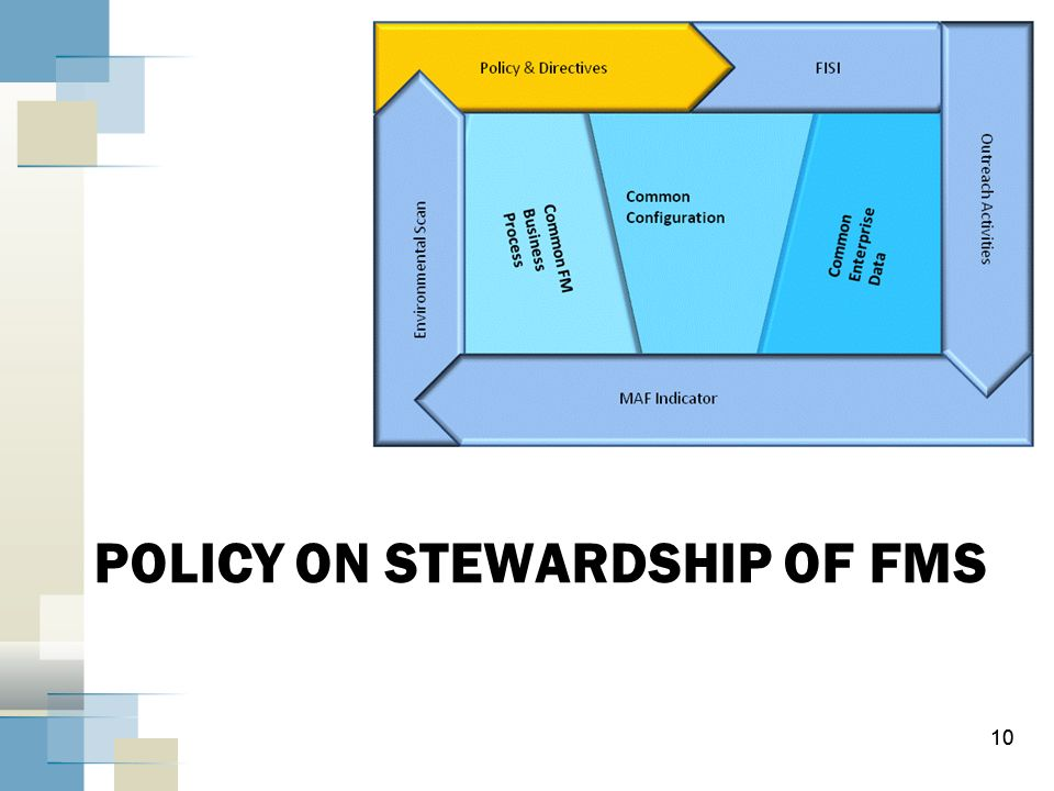 POLICY ON STEWARDSHIP OF FMS