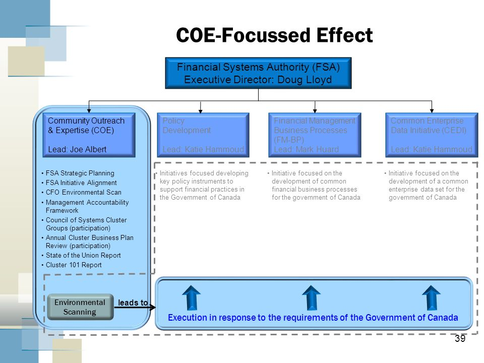 COE-Focussed Effect Financial Systems Authority (FSA)
