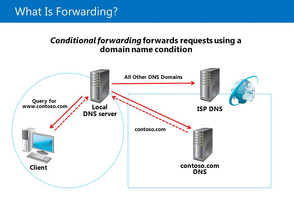 Implementing DNS Module D 7: Implementing DNS - ppt download