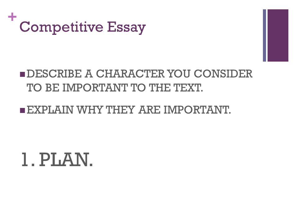 1. PLAN. Competitive Essay