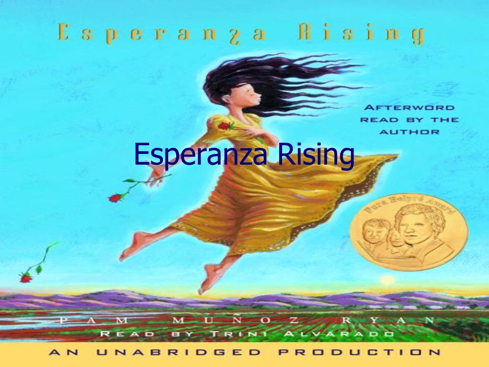 the plot line for esperanza rising Use these esperanza rising chapter summaries to read ahead, plan your lessons, and review for a quiz or test on the novel or if you haven't read the novel yet, use these chapter summaries to preview the novel for your class.