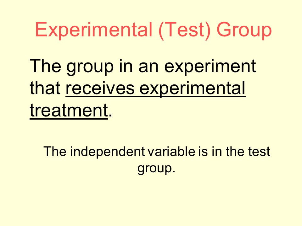 Experimental (Test) Group