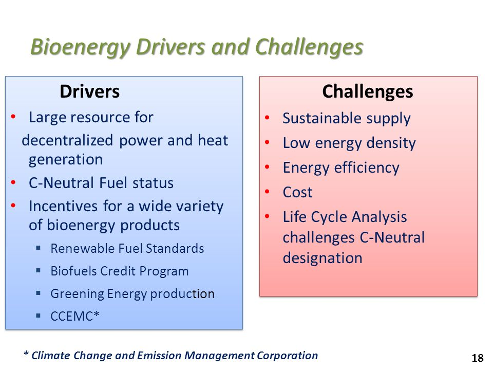 Bioenergy Drivers and Challenges