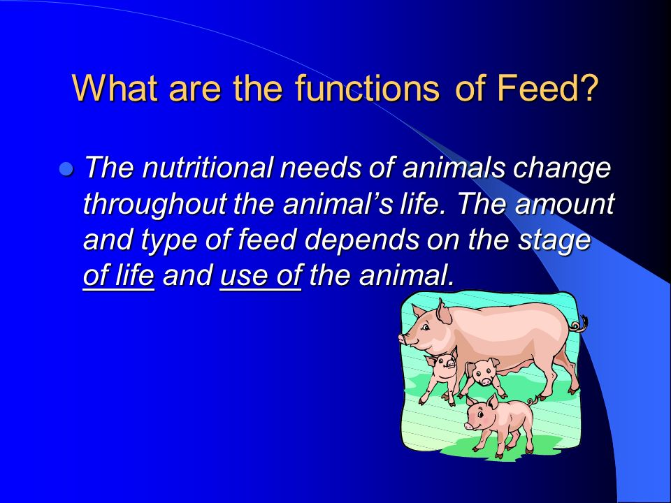 What are the functions of Feed