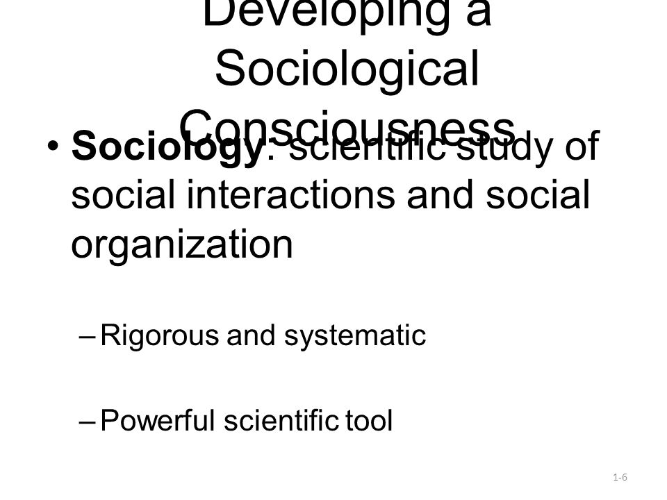 Developing a Sociological Consciousness