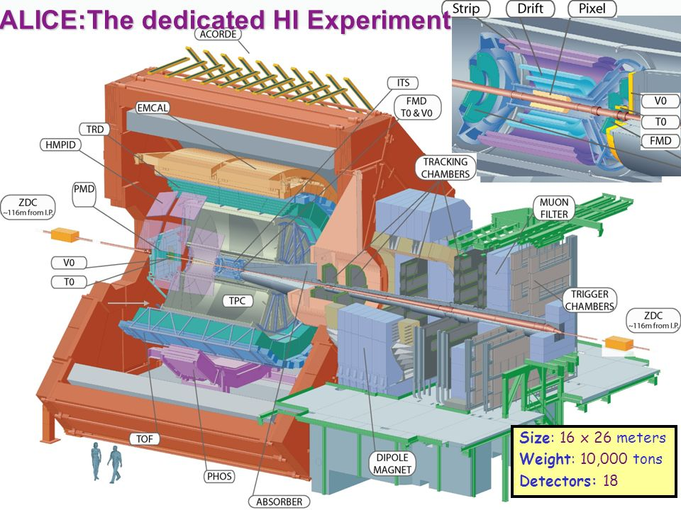ALICE:The dedicated HI Experiment