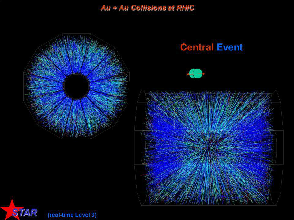 Au + Au Collisions at RHIC