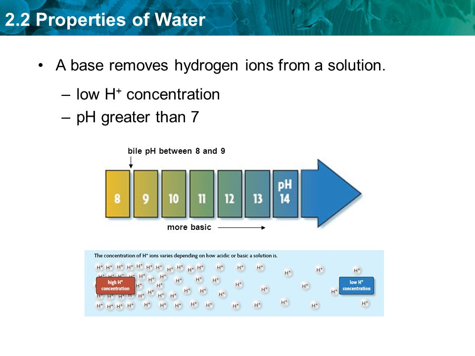 A base removes hydrogen ions from a solution.