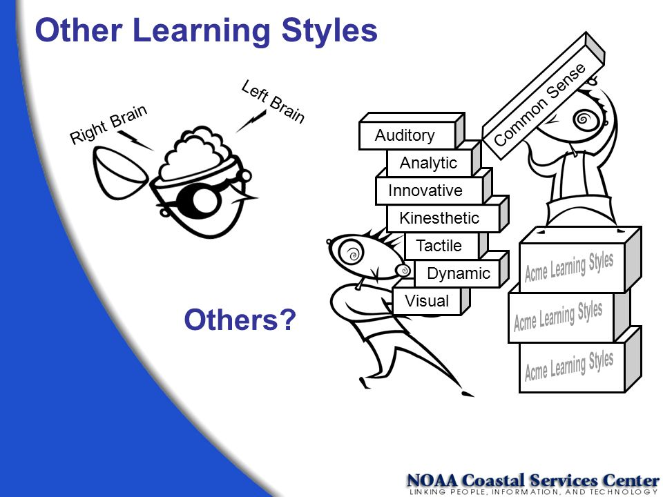Other Learning Styles Others Common Sense Left Brain Right Brain