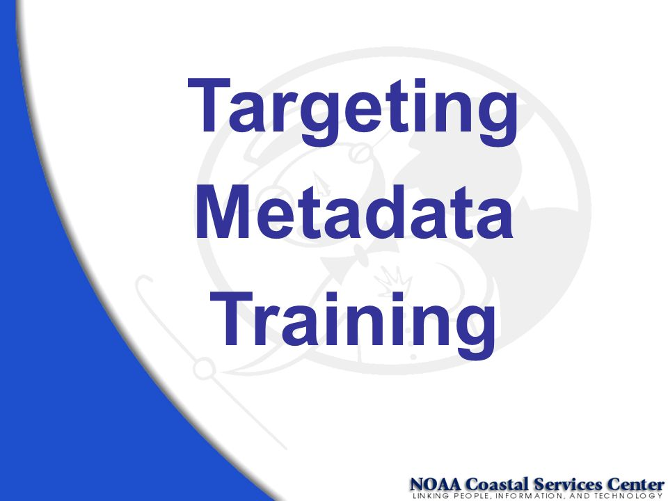 Targeting Metadata Training