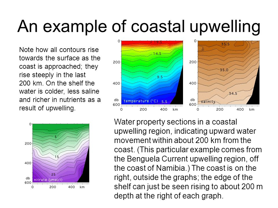 An example of coastal upwelling