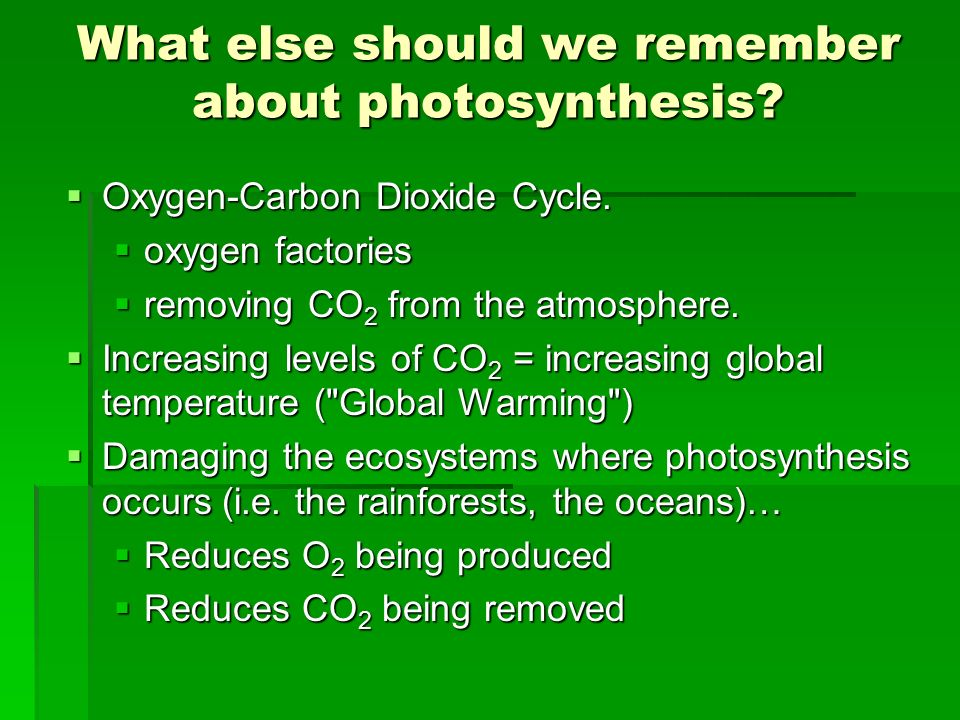 What else should we remember about photosynthesis