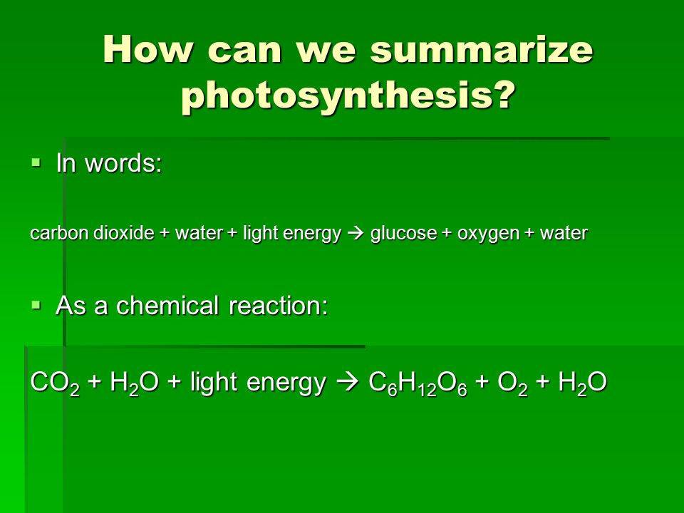 How can we summarize photosynthesis