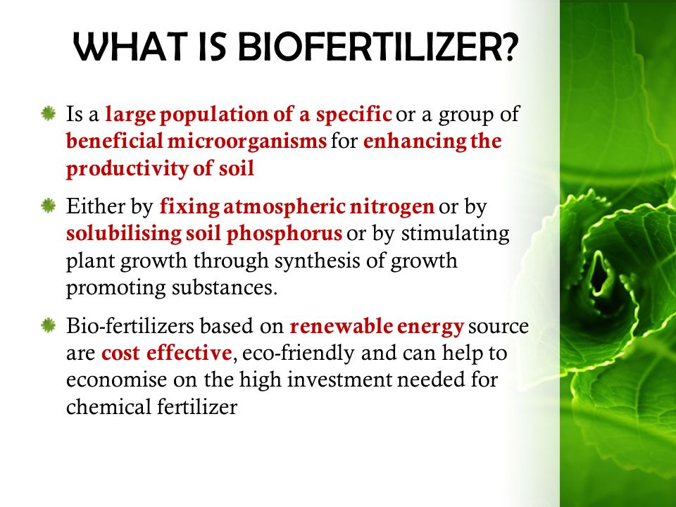 preparation of biofertilizers pdf