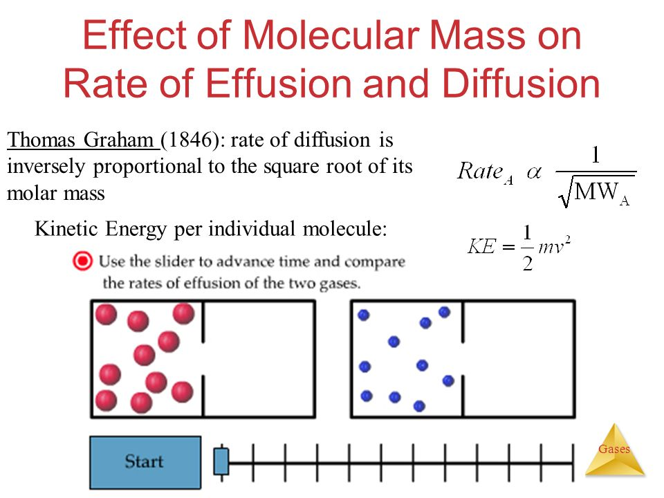 rate of diffusion and molecular weight