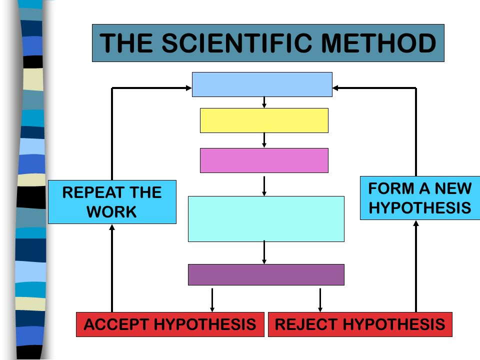 THE SCIENTIFIC METHOD FORM A NEW HYPOTHESIS REPEAT THE WORK
