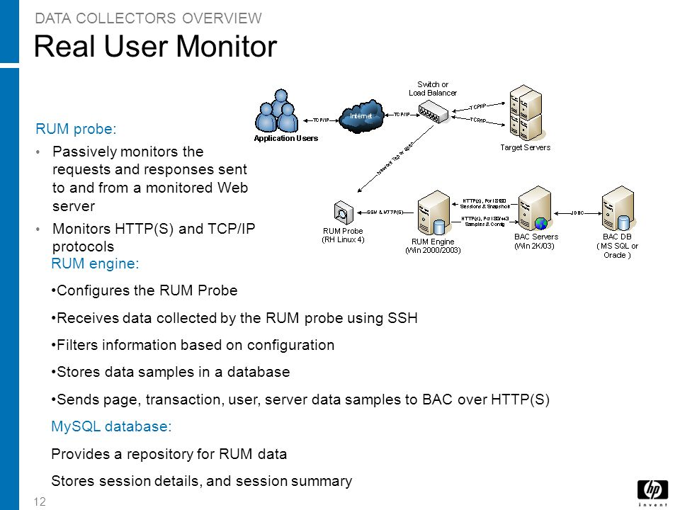 Real User Monitor DATA COLLECTORS OVERVIEW RUM probe: