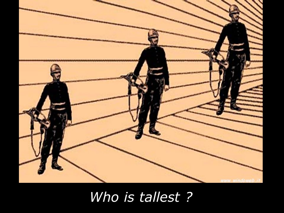 Who is tallest