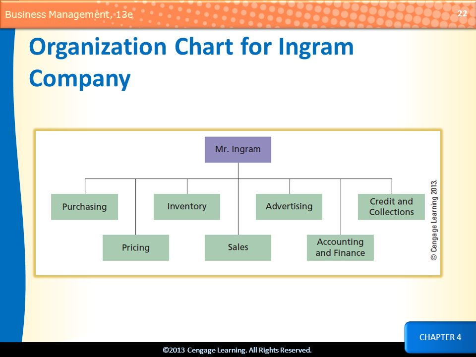 Organization Chart for Ingram Company