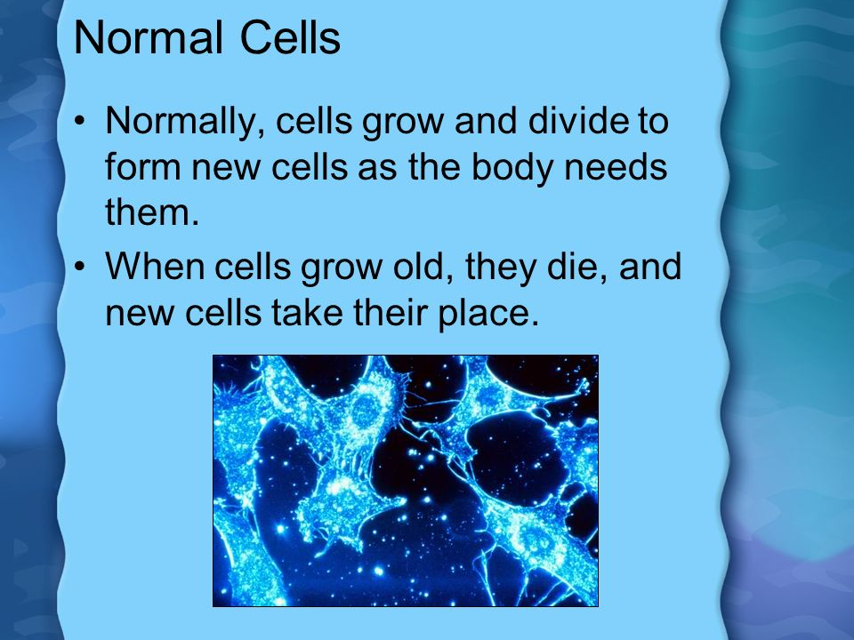 Normal Cells Normally, cells grow and divide to form new cells as the body needs them.