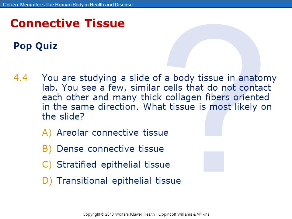 Chapter 4 Tissues Glands And Membranes Ppt Video Online Download