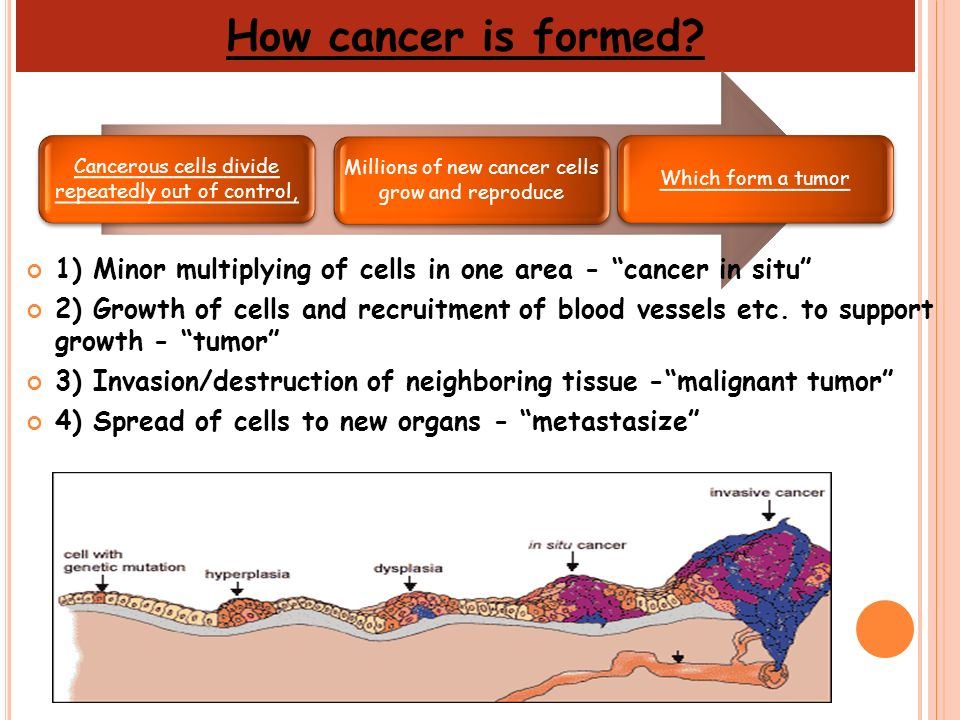How cancer is formed Cancerous cells divide repeatedly out of control, Millions of new cancer cells grow and reproduce.