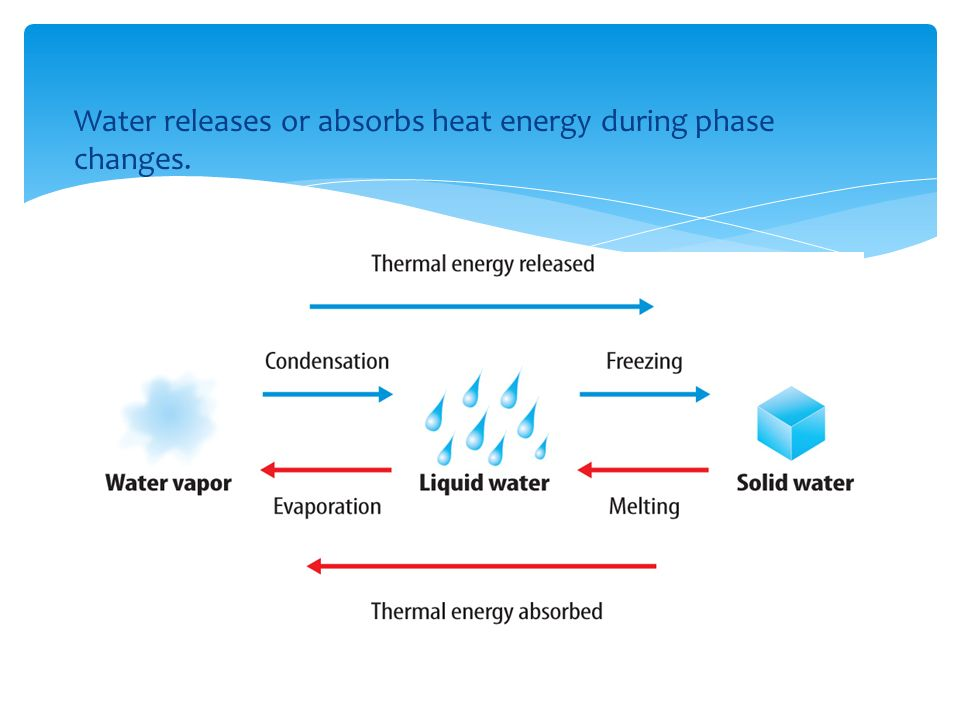 Water releases or absorbs heat energy during phase changes.