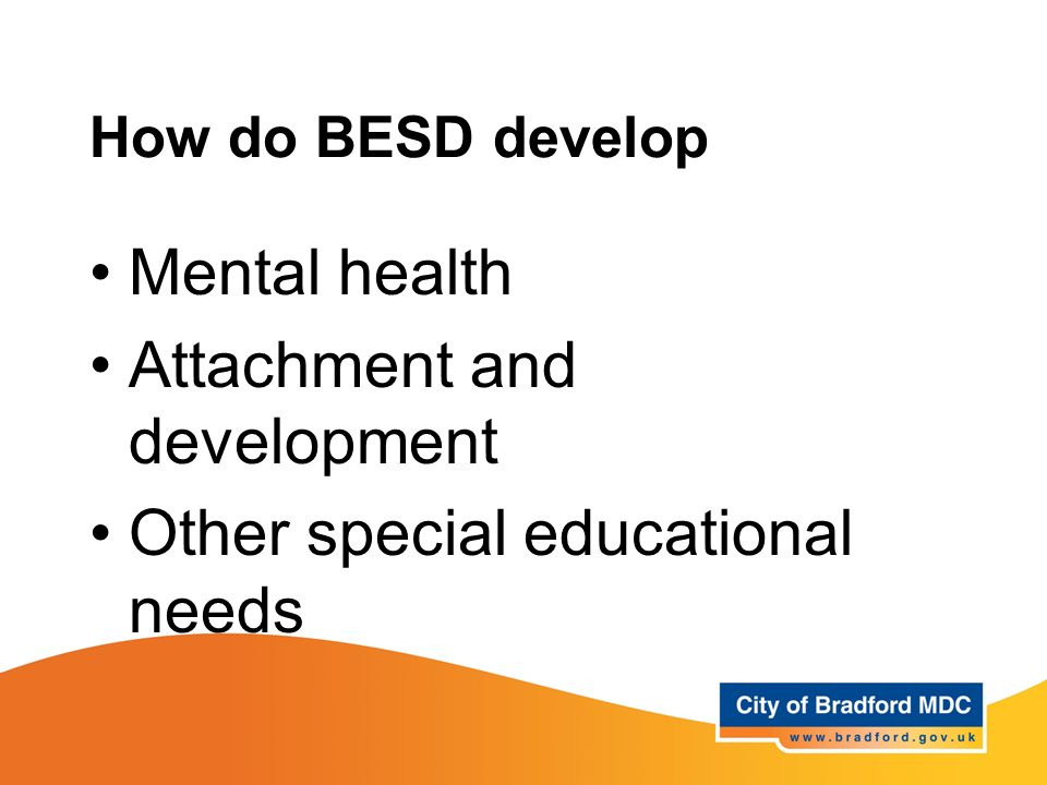 Attachment and development Other special educational needs