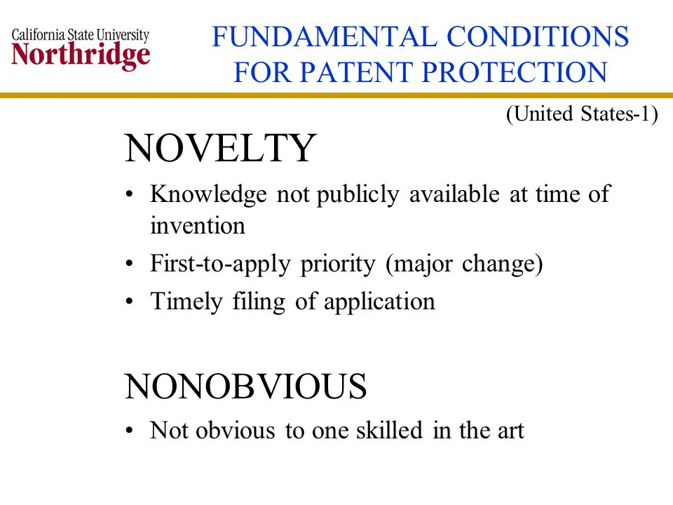 FUNDAMENTAL CONDITIONS FOR PATENT PROTECTION