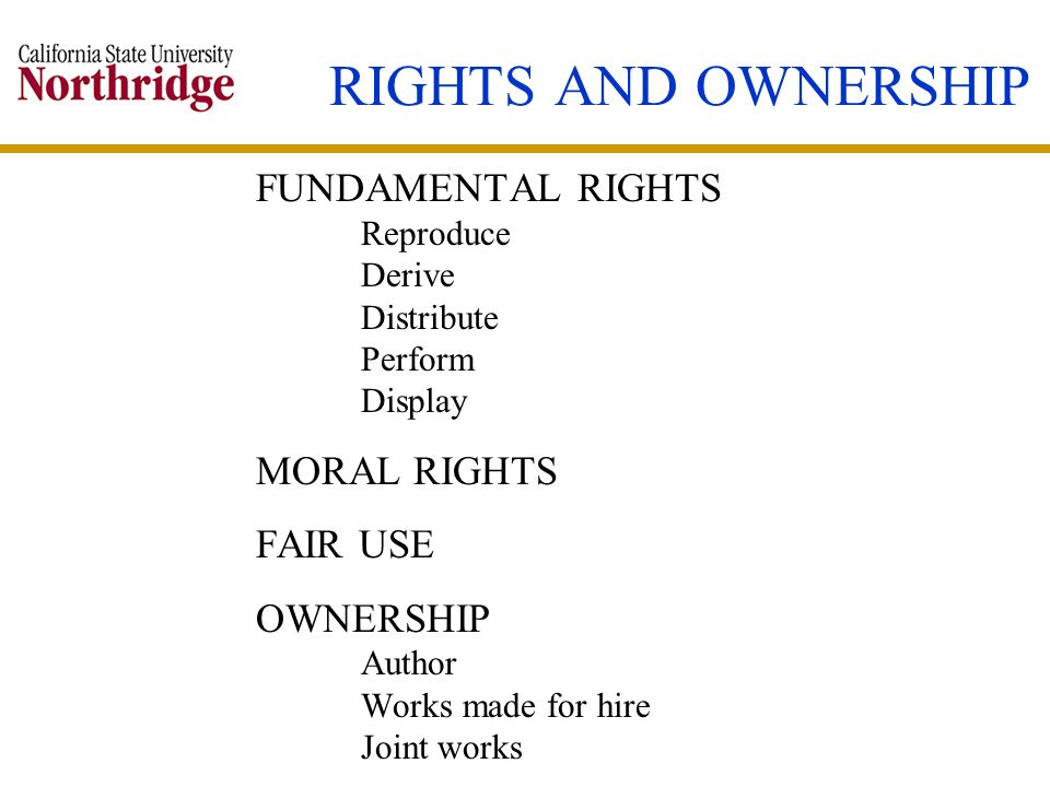 RIGHTS AND OWNERSHIP FUNDAMENTAL RIGHTS MORAL RIGHTS FAIR USE