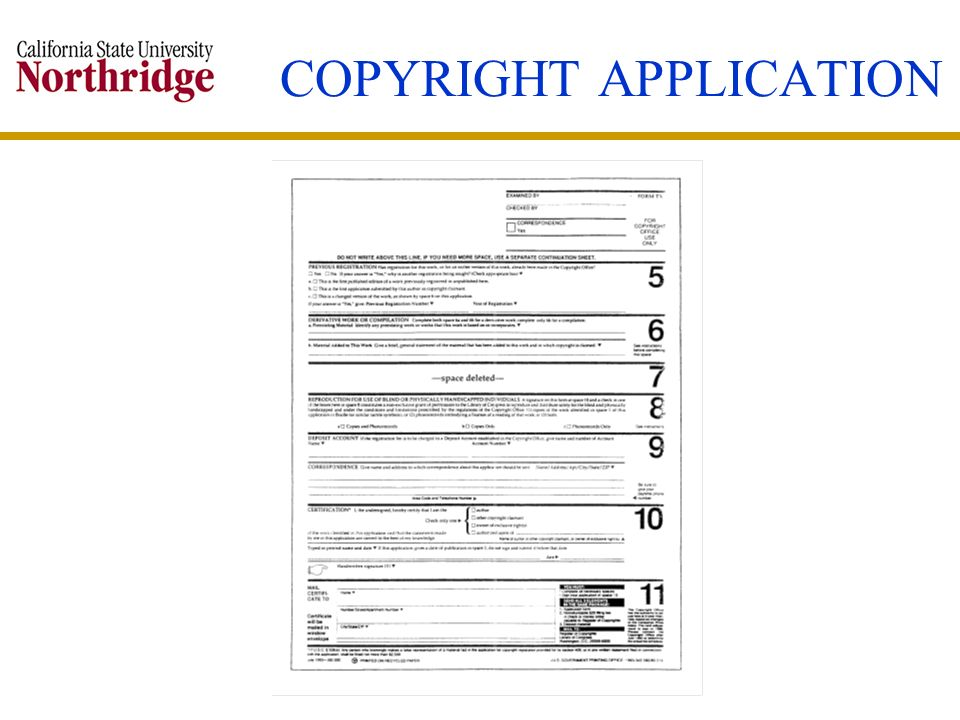 COPYRIGHT APPLICATION