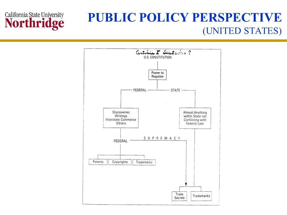 PUBLIC POLICY PERSPECTIVE (UNITED STATES)