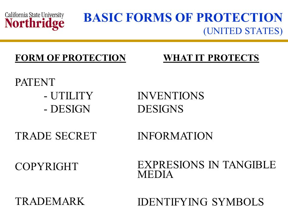 BASIC FORMS OF PROTECTION (UNITED STATES)