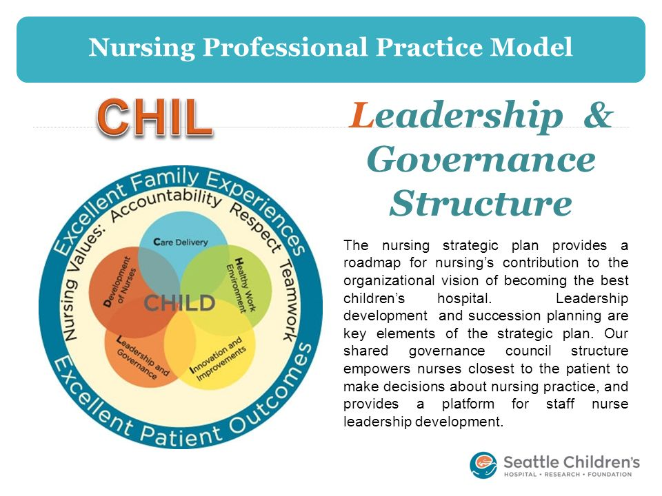 Nursing Professional Practice Model Leadership & Governance Structure