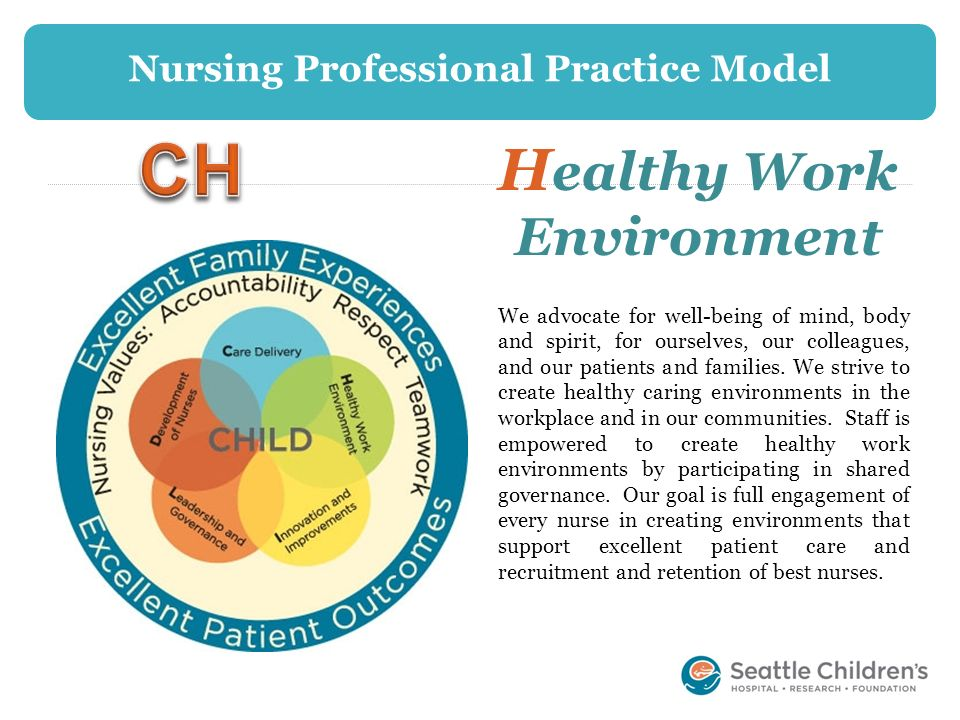 Nursing Professional Practice Model Healthy Work Environment