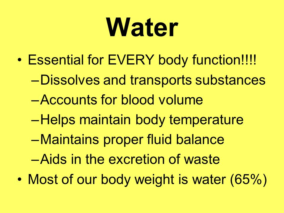 Water Essential for EVERY body function!!!!