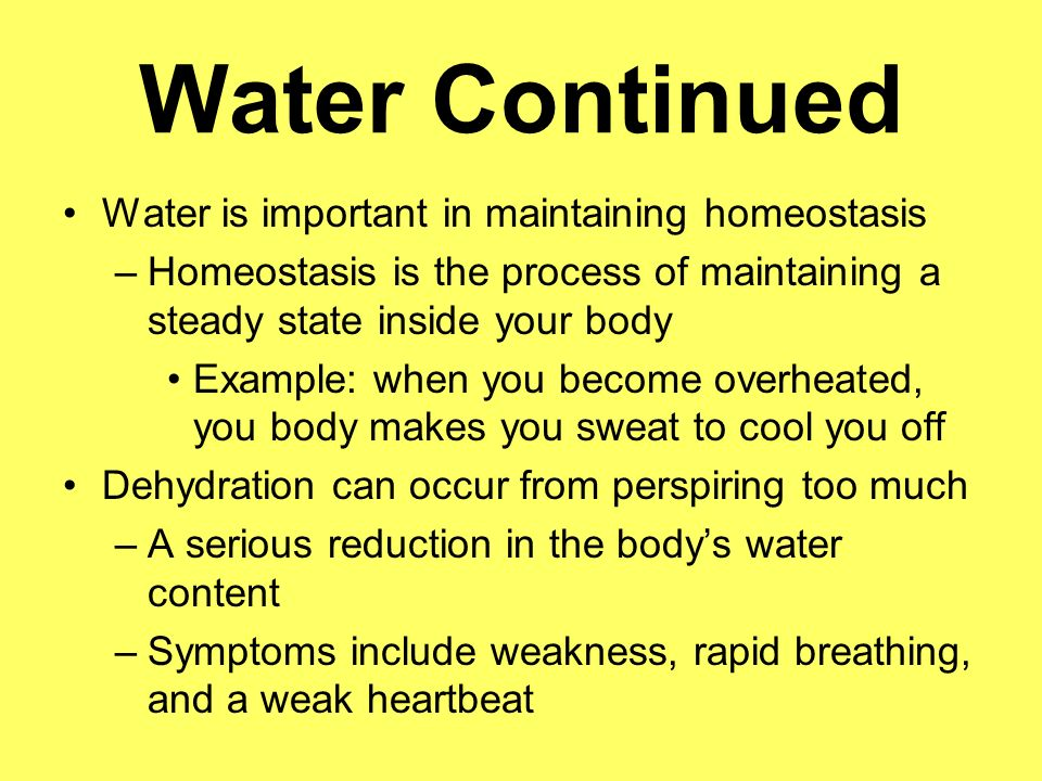 Water Continued Water is important in maintaining homeostasis