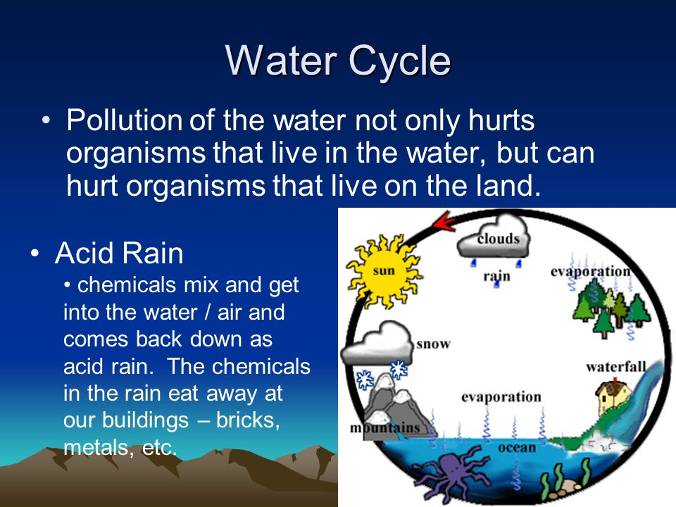 Water Cycle Pollution of the water not only hurts organisms that live in the water, but can hurt organisms that live on the land.