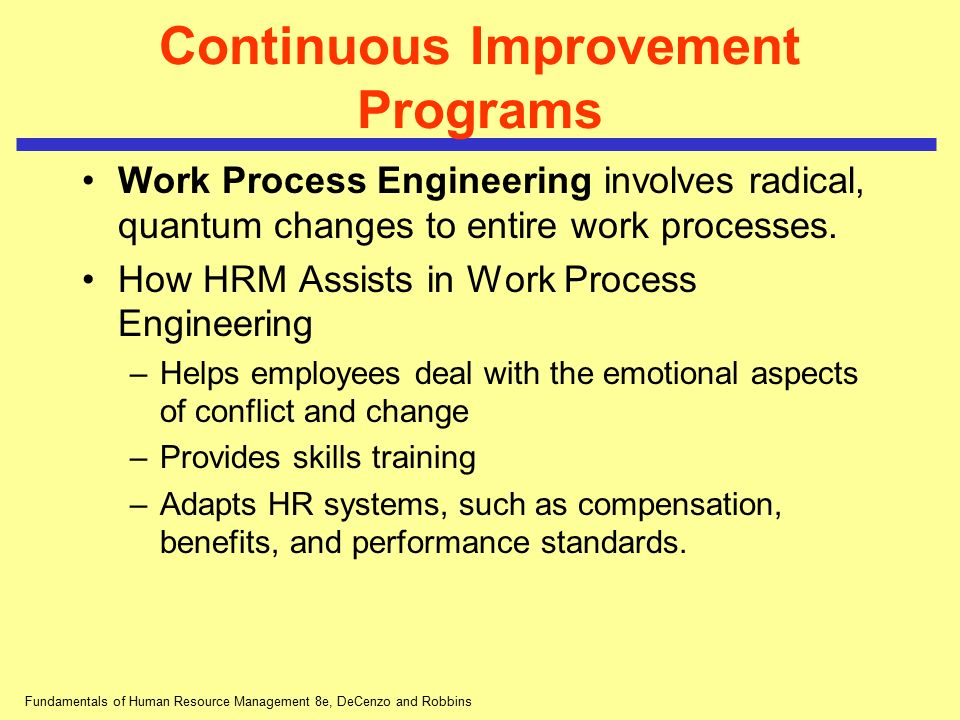 Continuous Improvement Programs