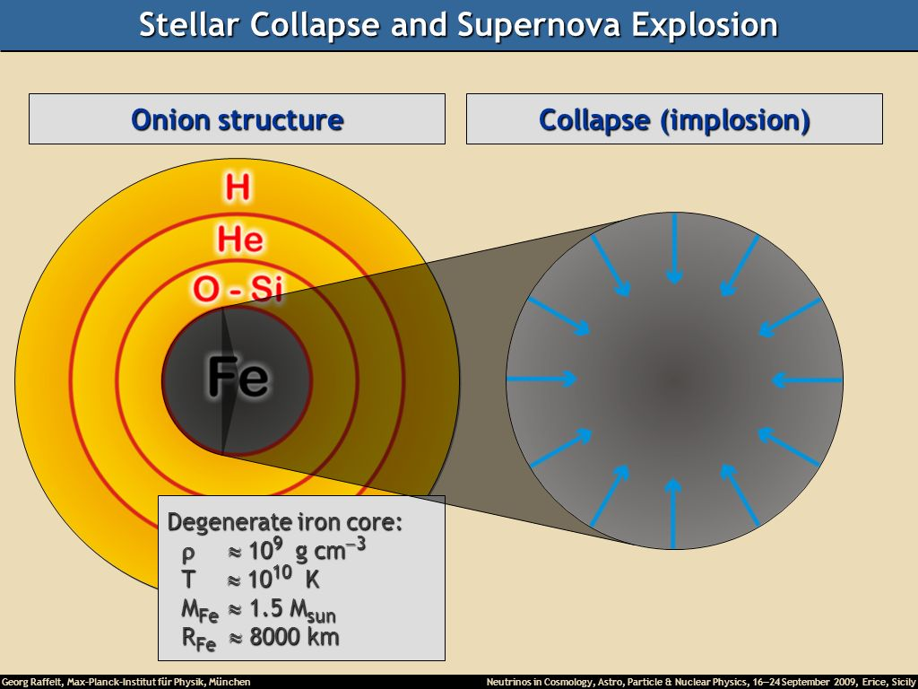 Stellar Collapse and Supernova Explosion