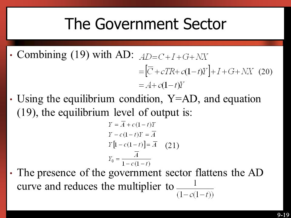 The Government Sector Combining (19) with AD: (20)