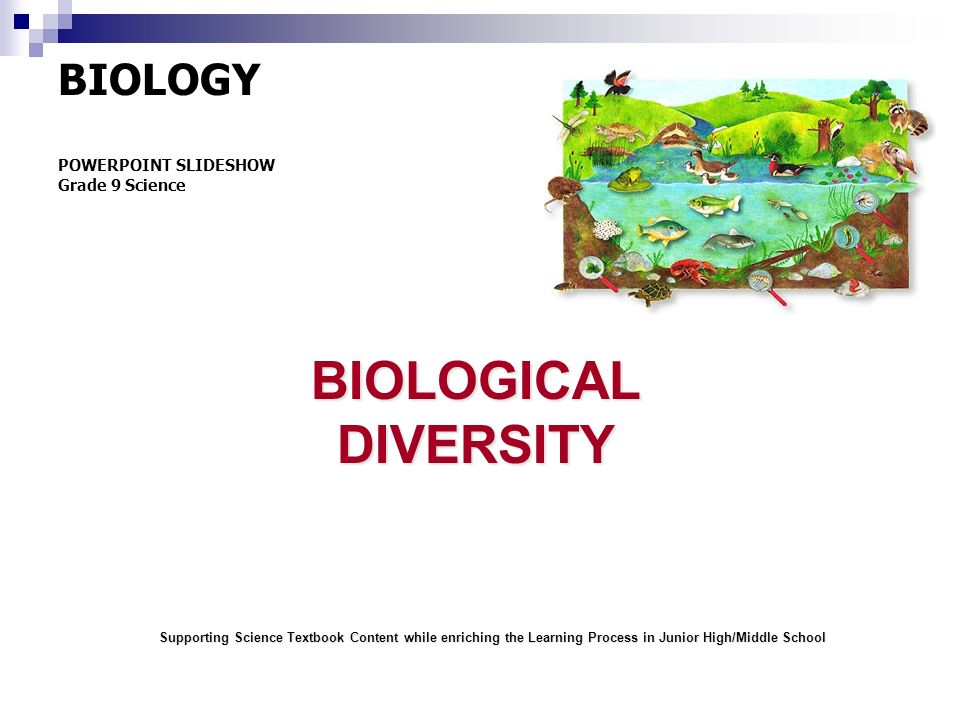 BIOLOGICAL DIVERSITY BIOLOGY POWERPOINT SLIDESHOW Grade 9