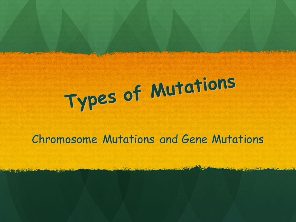 Chromosome Mutations and Gene Mutations